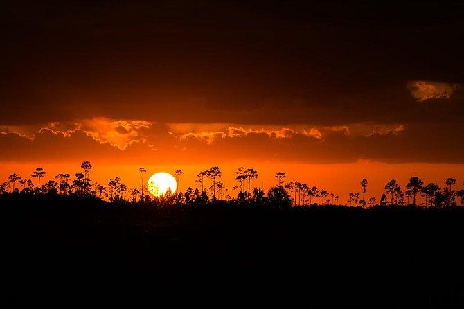 Taller y Tour de fotografía al atardecer de los Everglades