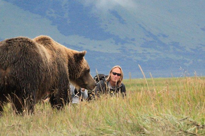 Alaska Bear Country Day Trip to Katmai or Lake Clark by Airplane