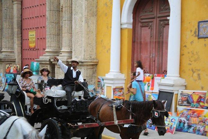 Carrozza trainata da cavalli e cena romantica
