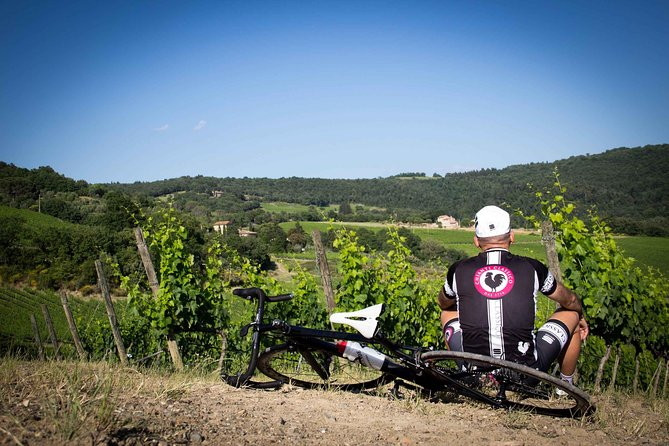 Classic Chianti Wine Region Bike Tour