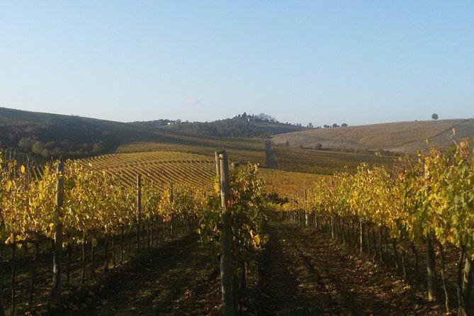 TUSCANY THE CHIANTI WINE LAND