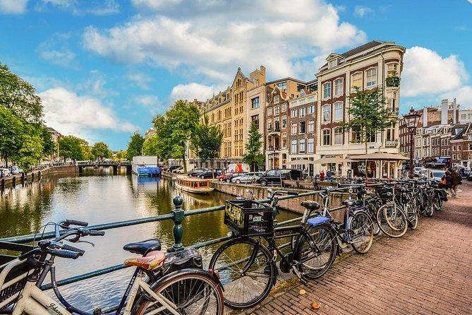 Excursão de bicicleta particular matinal ou à tarde do centro da cidade de Amsterdã