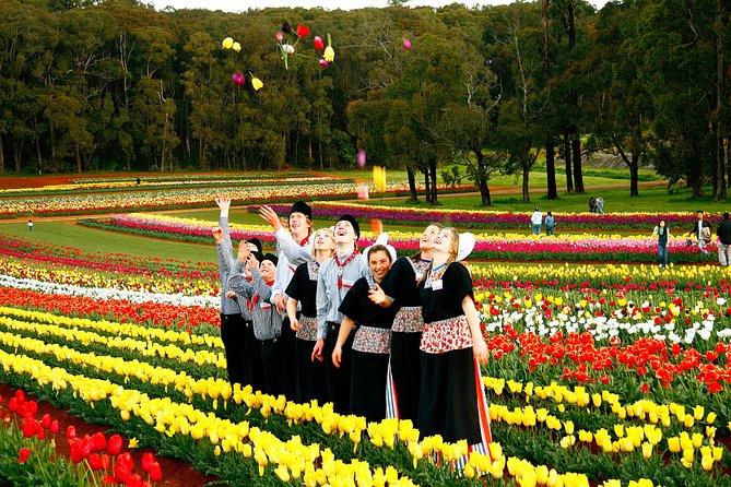Tesselaar Tulip Festival: General Entry Ticket