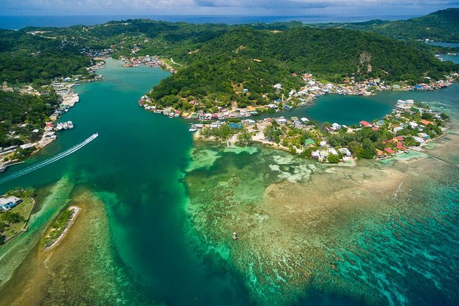 Shore Excursion: Roatan Island City Tour and Lunch