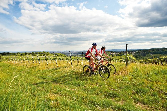 Visite privée: balade en vélo dans la forêt viennoise et la montagne Kahlenberg