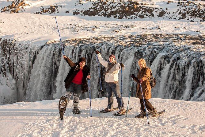 Dettifoss Waterfall Tour from Lake Myvatn