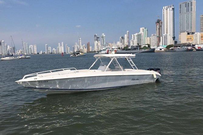 豪華なヨットとボートのレンタル