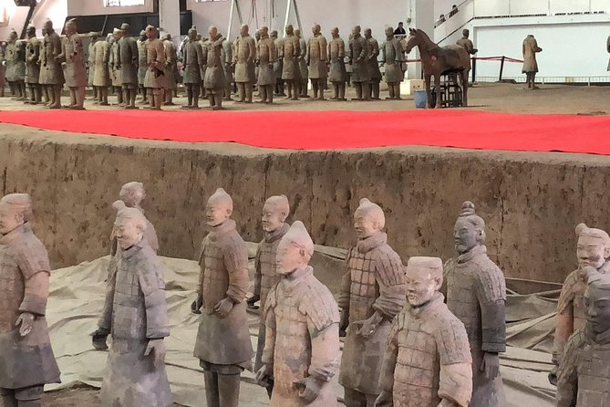 Xi'an Day Trip of Terracotta Warriors, City Wall, Big Wild Goose Pagoda