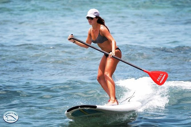 Stand Up Paddleboards >> Stand Up Paddleboard Lesson On The Big Island 2019 Big Island Of