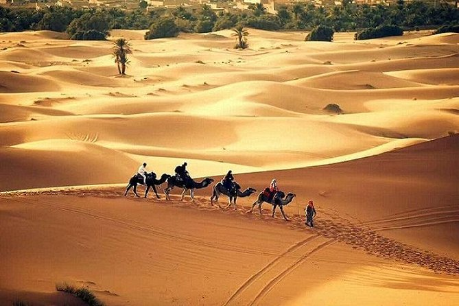 Multi-Day Private Tour from Marrakesh to Fez via Merzouga Desert