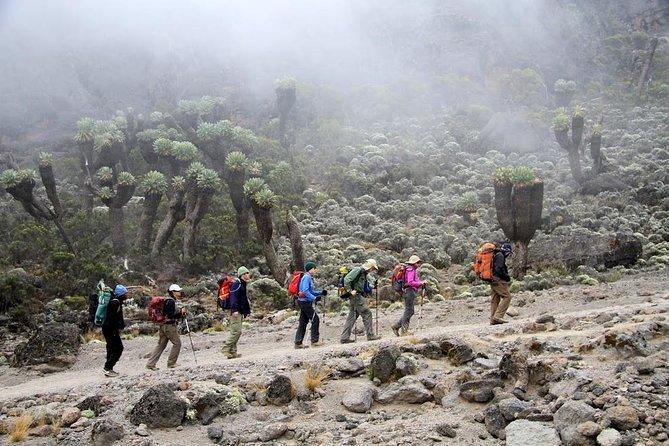 Mount Kilimanjaro Trekking via Marangu route-6 days