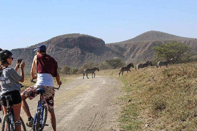 Safari Day Trip And Excursion At Naivasha