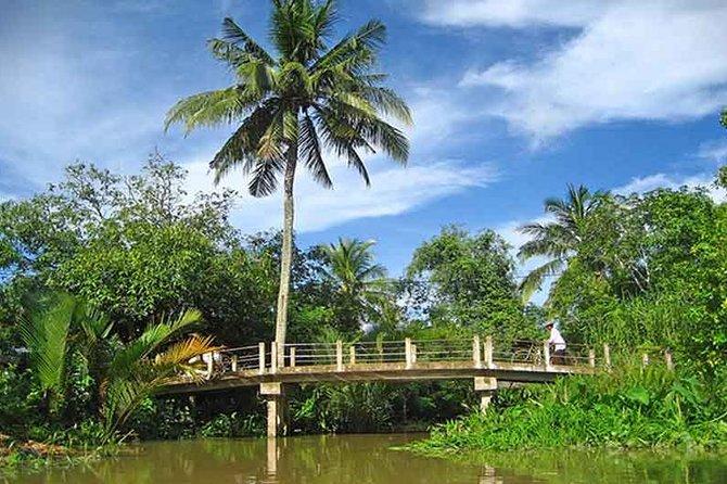 Den ikke-turistiske Mekong Delta Day Tour