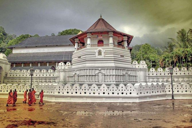 Visite privée de la journée Kandy avec Pinnawala de Colombo