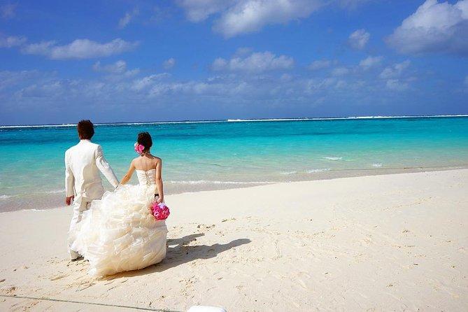 Egypt 8 days 7 nights Honeymoon package to Cairo Sharm El Sheikh