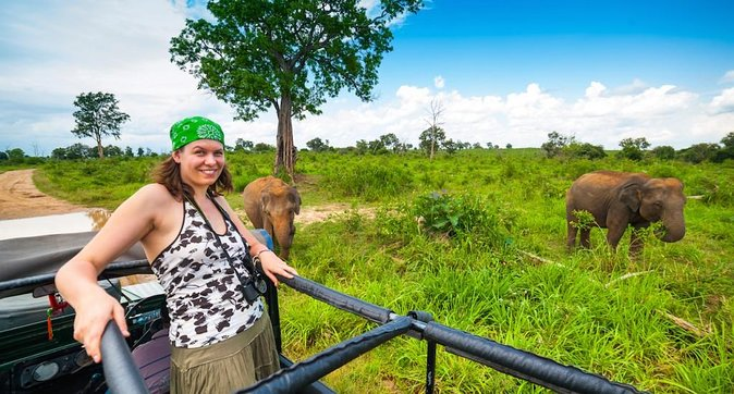 Day Excursions To Udawalawe From Galle