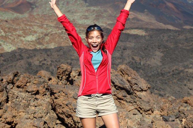 Teide National Park Private Shore Excursion