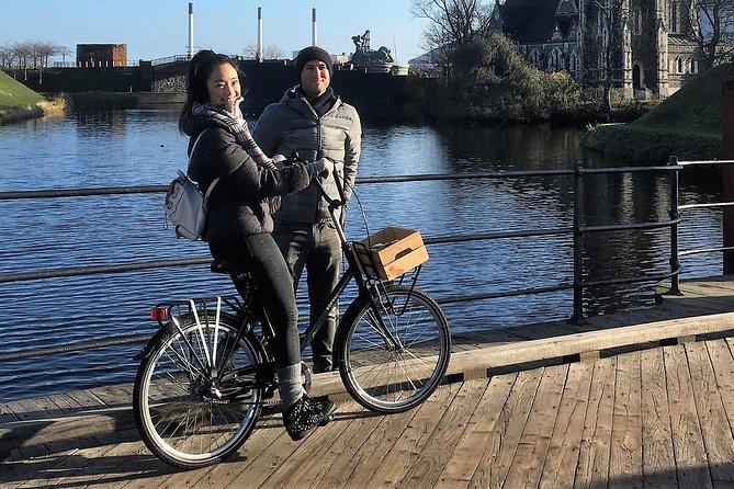 020bd10ac Copenhagen Private Bike Tour