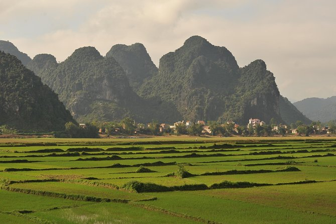 TOUR TO THE CAVES - ONE DAY tour to Phong Nha & Paradise caves