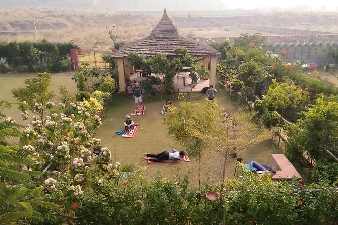 Yoga In Jaipur | India - Lonely Planet