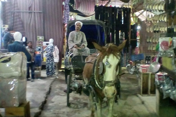 City Tour by Horse Carriage Luxor