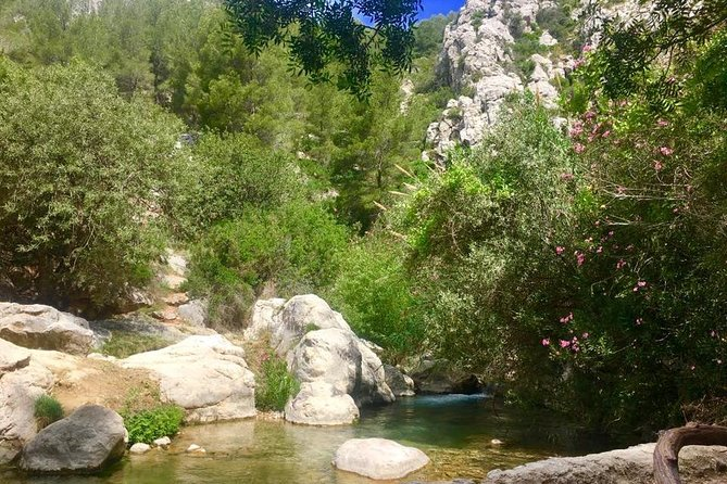 Afternoon Trip to the Algar Waterfalls from Benidorm