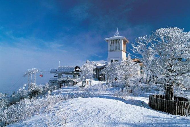 2-daagse Yongpyong Ski Resort Tour vanuit Seoul
