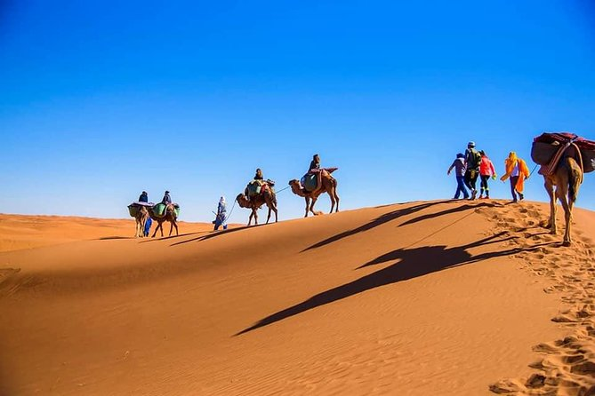 Morocco desert tour 4 days from Marrakech