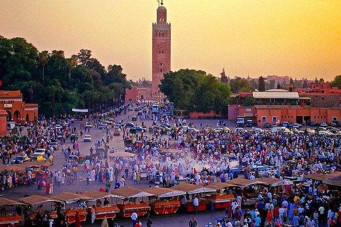 Half Day Guided Sightseeing Tour Of Marrakech