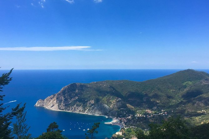 Cinque Terre Private Tour from Lucca