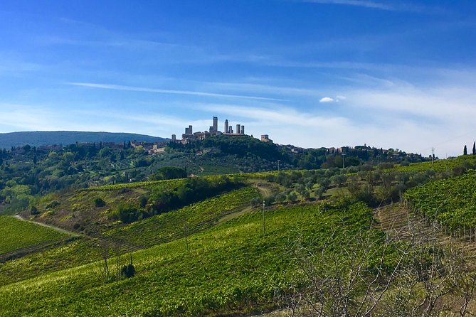 Siena and San Gimignano Private Tour from Florence