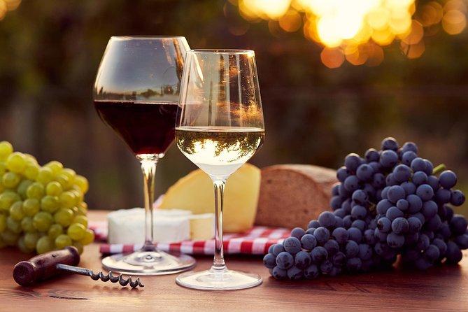 Pompeii & Vesuvius With Wine Tasting and Easy Lunch