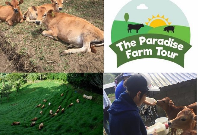 Visit a sustainable farm