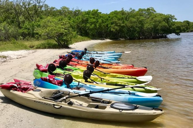 2 or 3 Hour Naples Kayak Rental with Single & Tandem Options