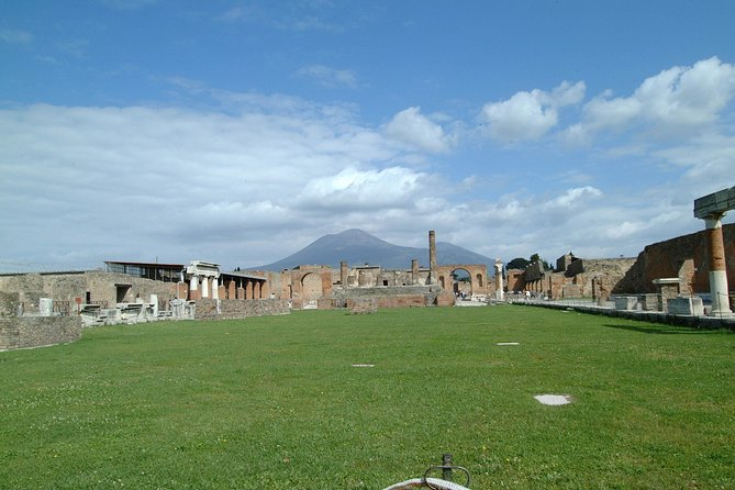 Private driver to Pompeii Half-Day Trip and return from Sorrento NO GUIDE
