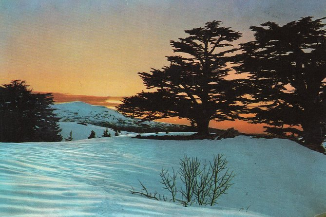 Private Tour - Qadisha Valley, Becharre, Jubran Museum & Cedars of God - Day Tour from Beirut