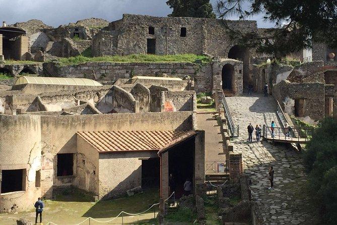Excursión de un día a Paestum y Pompeya