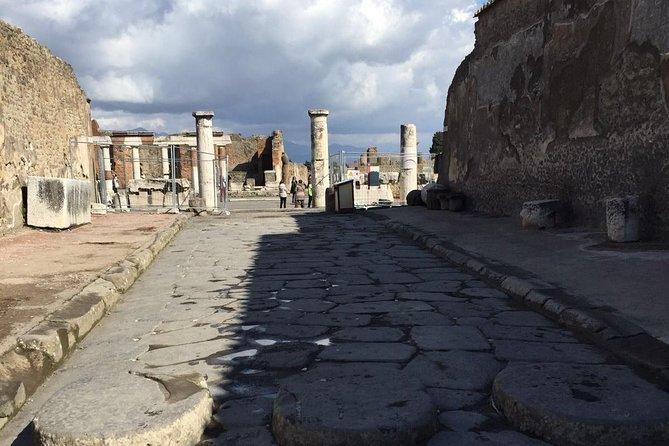 Day Tour of Pompeii Herculaneum and wine tasting