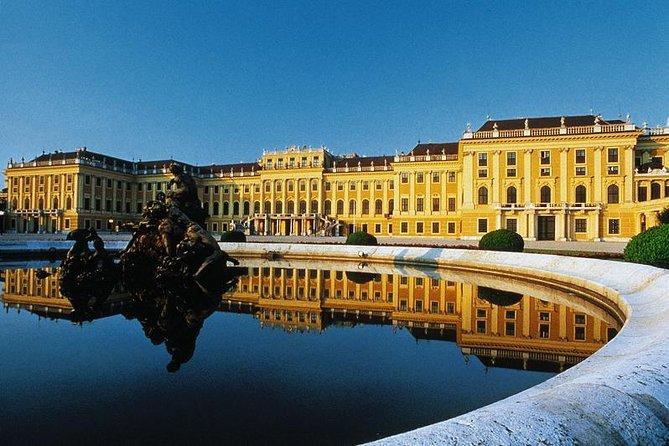 シェーンブルン宮殿とウィーンのハイライトプライベートツアー