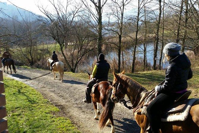 Horseback riding in Lunigiana