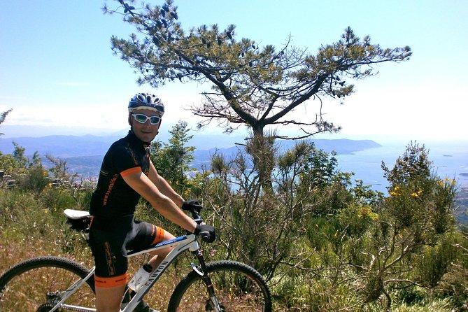 Mountain Bike Tour in the Cinque Terre