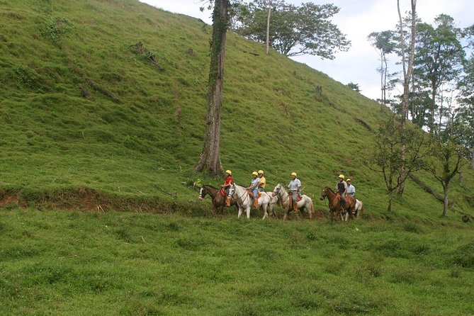 Adventure Combo: Canopy & Horseback Riding