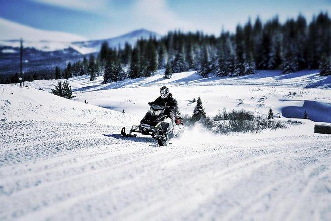 Snowmobiles and Huskies