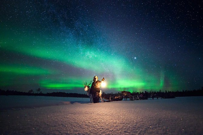Reindeer Experience and Northern Lights