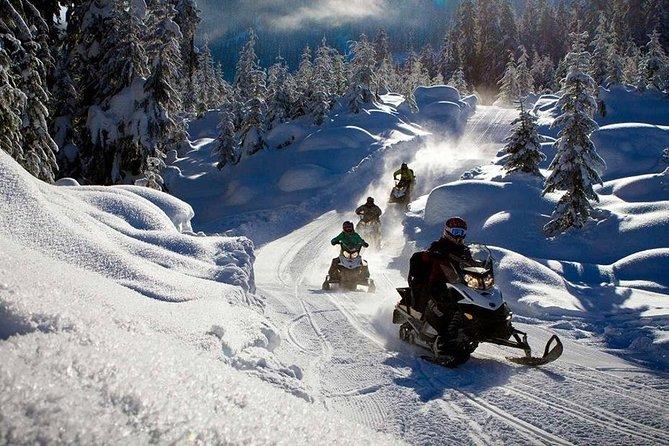 Full Day Snowmobile Safari
