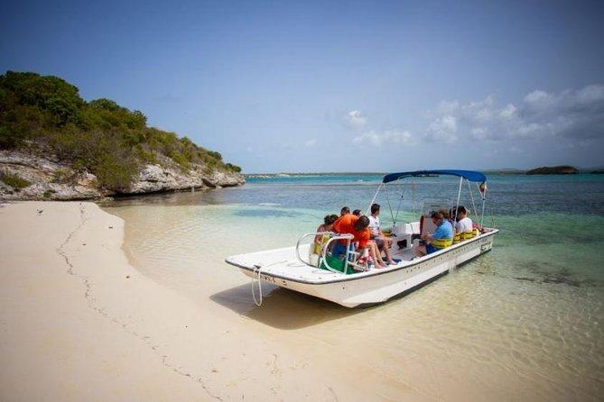 Island Safari & Stingray City