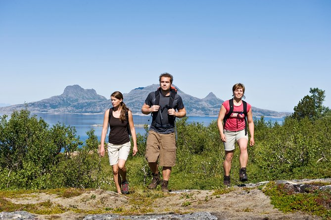 Terje Rakke - Nordic Life