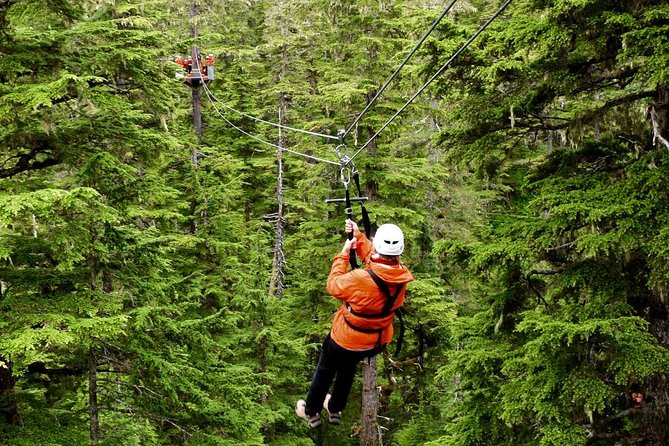 Alpine Zipline Adventure in Juneau, AK