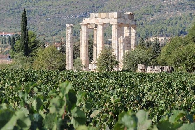 Nemea wine roads, The most famous wine tour in Greece