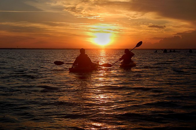 Sunset Bioluminescence Tour on the Merritt Island Wildlife Refuge